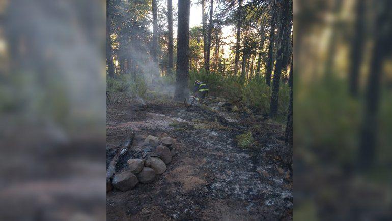 Caviahue: las brasas de un asado desataron el incendio de un bosque