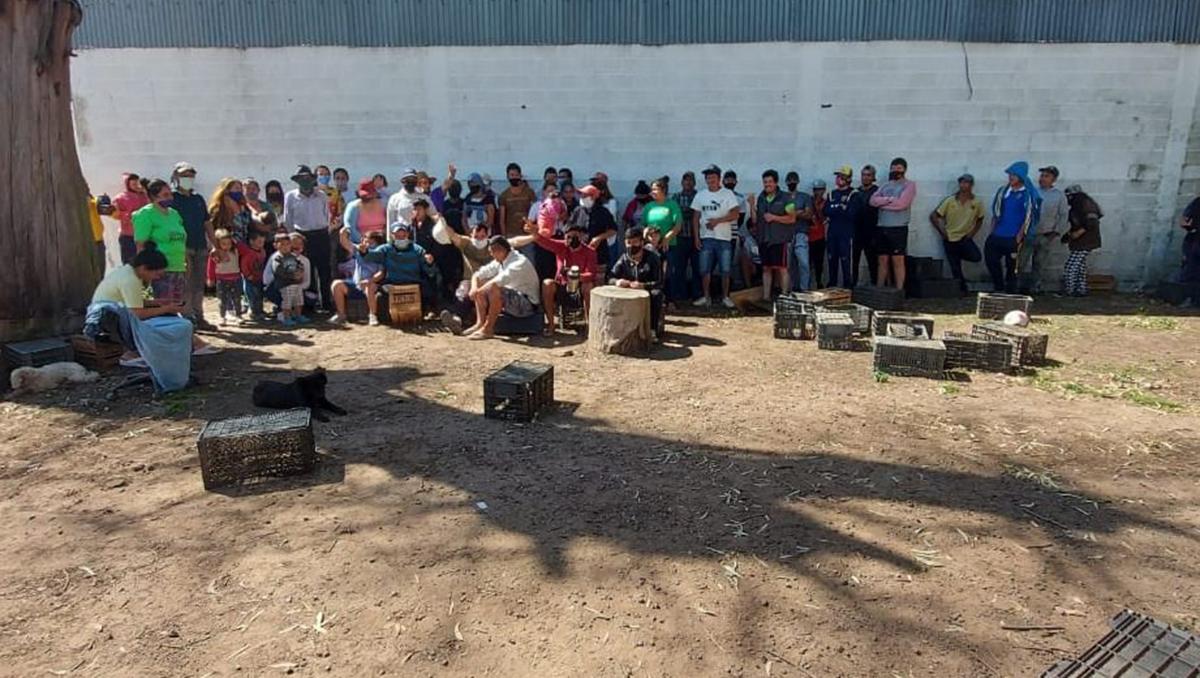 rescatan a casi 100 personas que eran esclavizadas en un campo