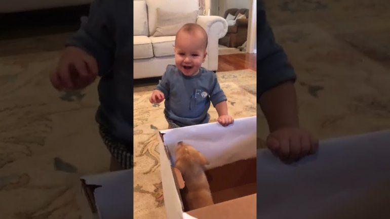 Pura emoción: la alegría de un bebé al recibir un cachorro de regalo