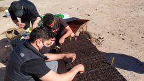 neuquen: arquitectos seran formados en agricultura urbana