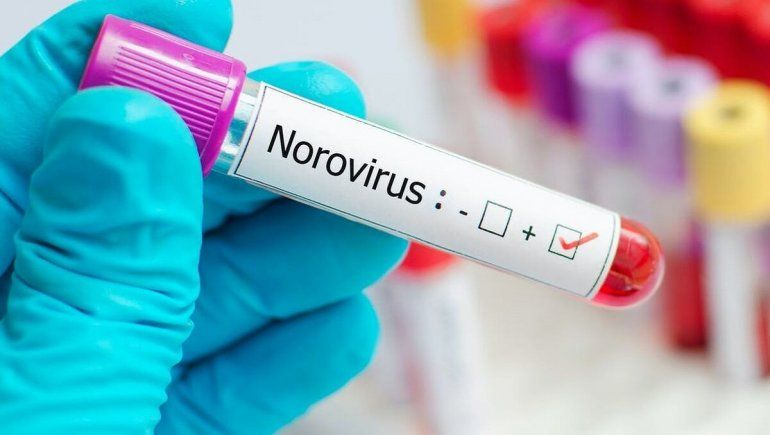 Norovirus: empieza a propagarse en China