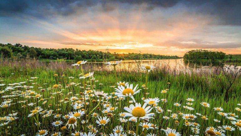 El significado de soñar con la naturaleza