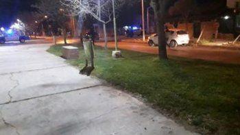 Centenario: conductor borracho chocó contra un auto estacionado