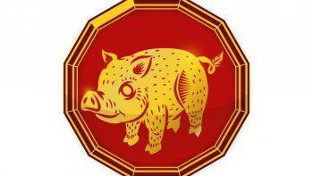 Horóscopo chino: julio traerá buenas noticias para el Cerdo