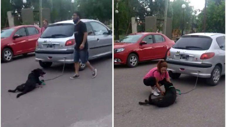 Enganchó el perro al auto y lo arrastró siete cuadras