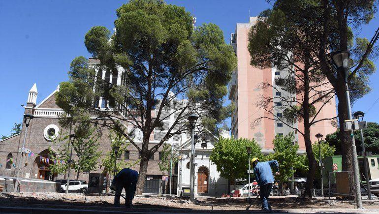 Tras la tala de un árbol, la Muni explicó las obras sobre la Avenida Argentina