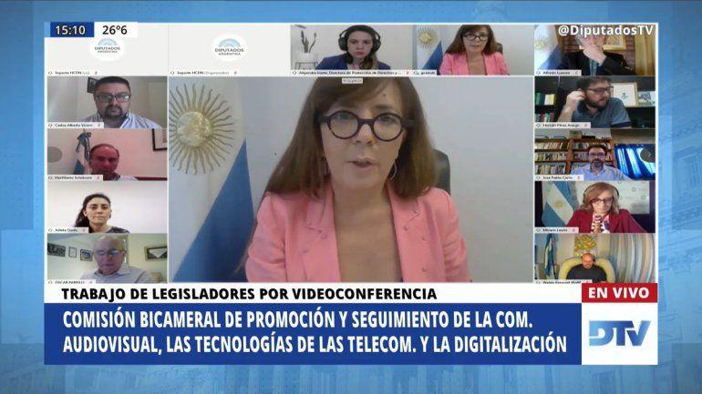 Lewin expone ante Diputados sobre la creación del observatorio NODIO