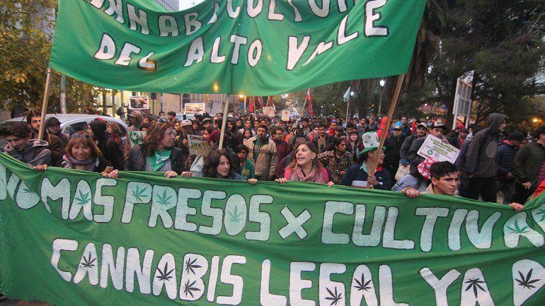 Marcha por el Cannabis en Neuquén con reparto de plantines