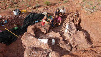 habrian hallado en neuquen los restos del dinosaurio mas grande del mundo