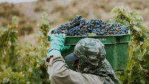 los vinos argentinos generan mas empleo y dolares por exportacion que la soja
