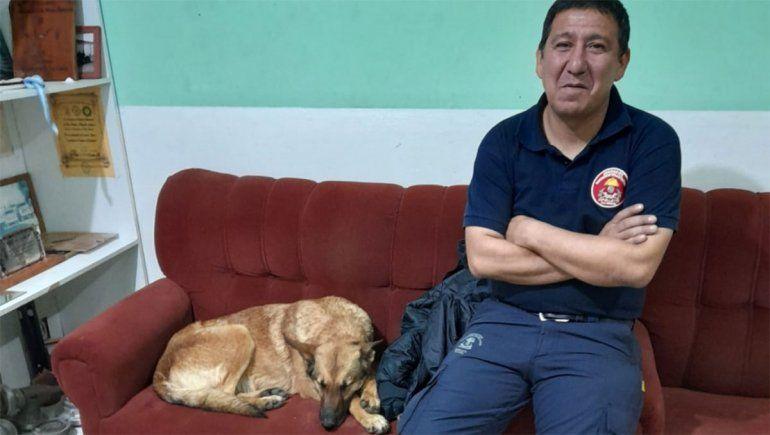 La perra, Roma, volvió con su adiestrador.