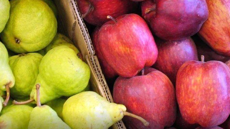La exportación de peras y manzanas creció 6,5% hasta mayo
